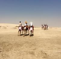Riding Camels in the Qatari Desert